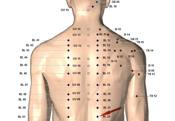 acupuncture chart image