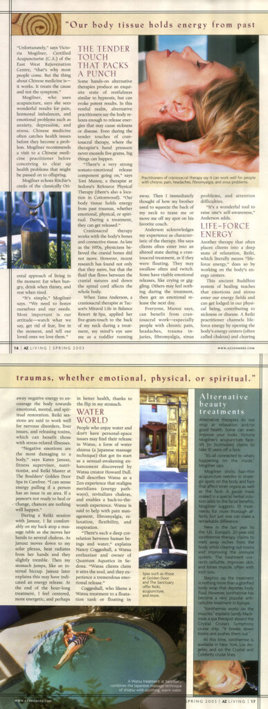 image scan of feature article