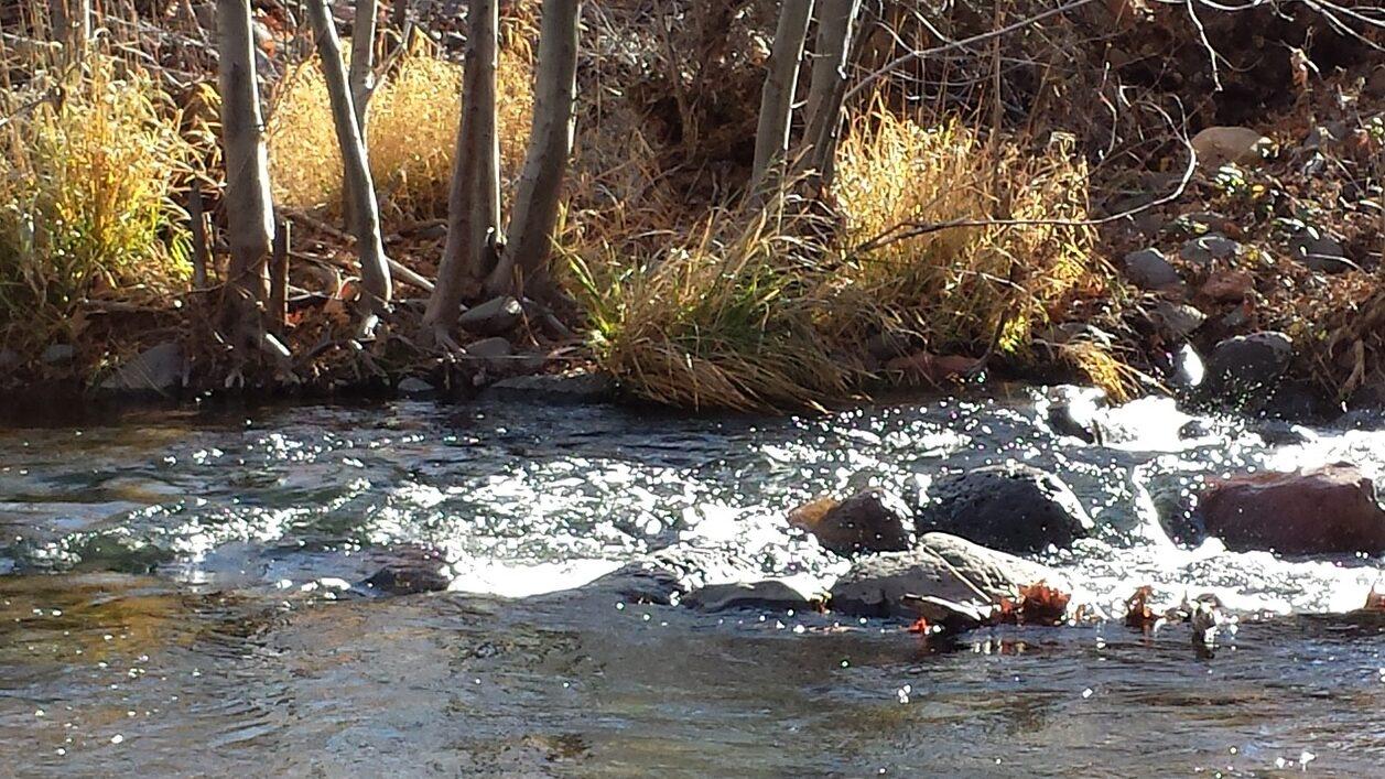 A stream running over rocks.